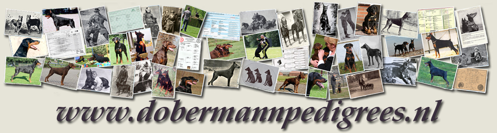 Dobermannpedigrees.nl permantently closed